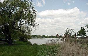 07_meadow_lake