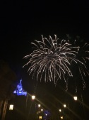 Wishes from the Beast's castle